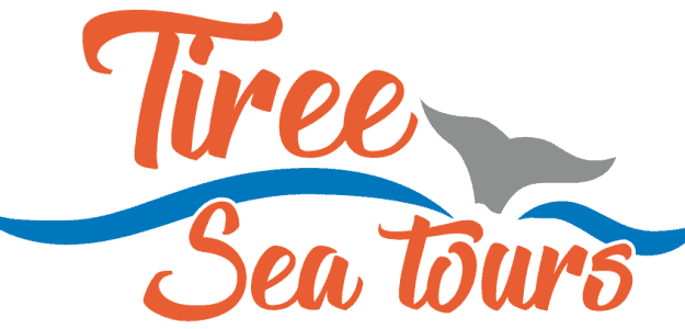 Tiree Sea Tours