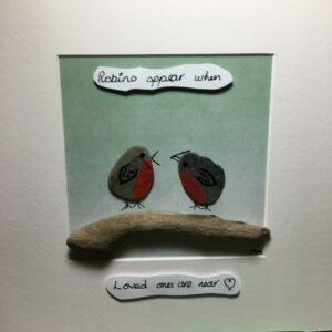 Robin appear 2 robins